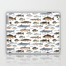A Few Freshwater Fish Laptop & iPad Skin