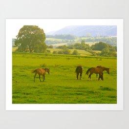 French Hills Art Print