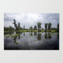 Water canals Canvas Print