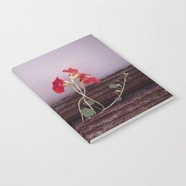 Nasturtium Notebook