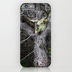 Forest Spirit Skull iPhone 6s Slim Case