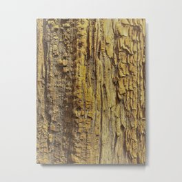 Texture In Wood Metal Print