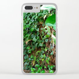 Tropical Forests II Clear iPhone Case