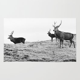 Stags on the hill Rug