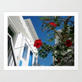 Mykonos Blooms Art Print