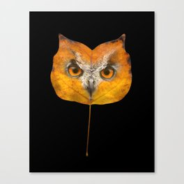 Autumn Owl-1 Canvas Print