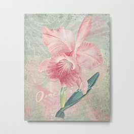 Cattleya Malouana Orchid - Pink Orchid Collage Art - Vintage Orchid Collage Metal Print