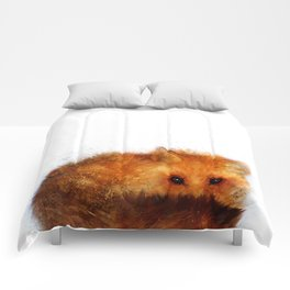 Shy Red Fox Comforters