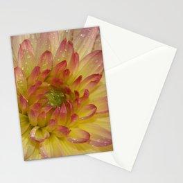 Dahlia 091019 Stationery Cards