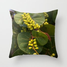 Tropical grapevines gently touched by the fading sunlight. Throw Pillow