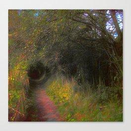 Summer Walking Canvas Print