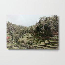 Tegalalang Rice Terraces Overlook Metal Print