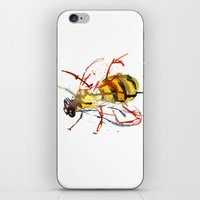 bee iPhone & iPod Skins featuring Bee by Lauren Thawley
