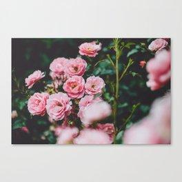 Floral II Canvas Print