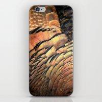 turkey iPhone & iPod Skins featuring Turkey by Nichole B.