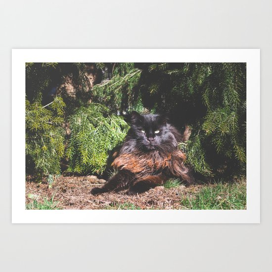The king of the cats Art Print