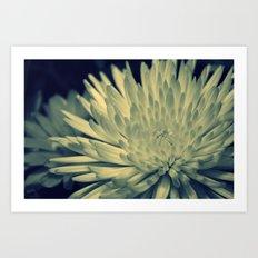Cross Flower Art Print