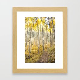 Fall Colors, Yellow Woods Framed Art Print