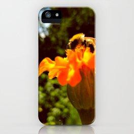 bee of autumn iPhone Case