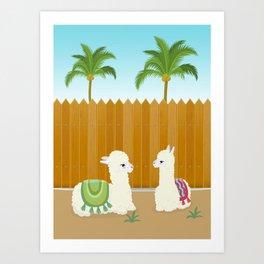 Llama Chit Chat on The Backyard Art Print