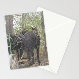 Percheon Team Stationery Cards