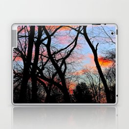 Sunset Through the Tangled Trees Laptop & iPad Skin