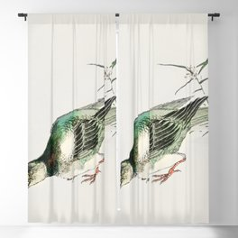 Japanese Magpie and Waterfall  from Pictorial Monograph of Birds (1885) by Numata Kashu (1838-1901) Blackout Curtain