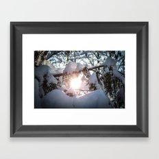 Sunny Haze Framed Art Print