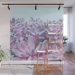 Sweet Succulents Wall Mural