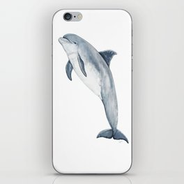 Bottlenose dolphin iPhone Skin