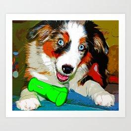 australian shepherd aussie dog puppy vector art Art Print