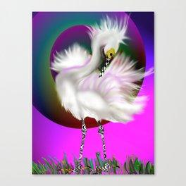 preening egret Canvas Print