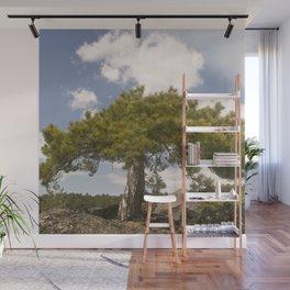 Volcano Etna - Sicily - Italy Wall Mural