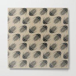 Trilobite Fossils Metal Print