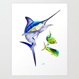 White Marlin Chasing Dolphin Fish Art Print