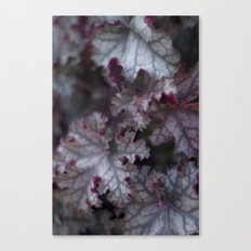Purple Leaves Canvas Print