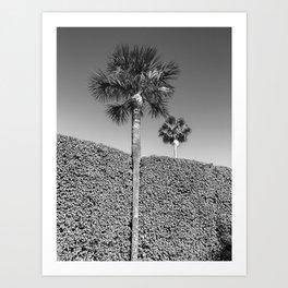 landscape architecture no.1 Art Print
