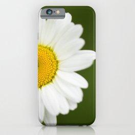Beautiful Daisy Natural Green Background #decor #society6 #buyart iPhone Case