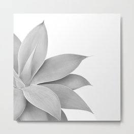 Agave Finesse #6 #tropical #decor #art #society6 Metal Print