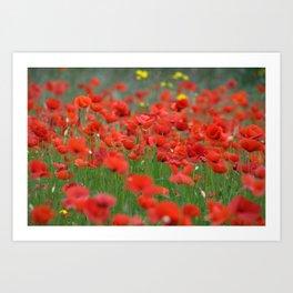 Poppy field 1820 Art Print