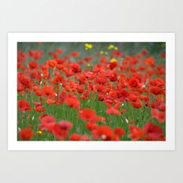 Poppy field 1820 Art Print