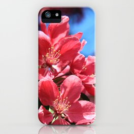 Malus  iPhone Case
