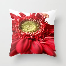 Red and White 2 Throw Pillow