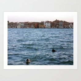 2 Dogs in the Water, Giudecca Canal, Venice, Italy Art Print