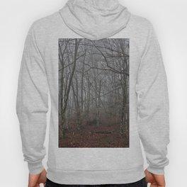 Dark forest. Hoody