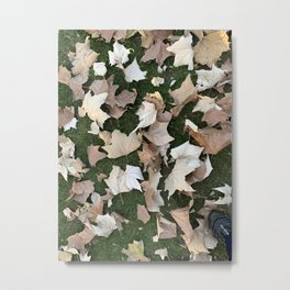 Leaves on the grass Metal Print
