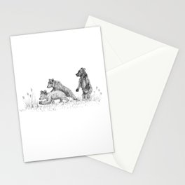 3 Cute Bears Stationery Cards