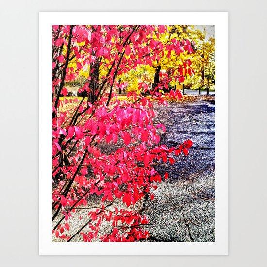 A colorful path Art Print