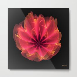 Reddish Orange Rose Metal Print