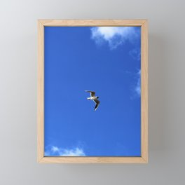 Flying Seagull Framed Mini Art Print